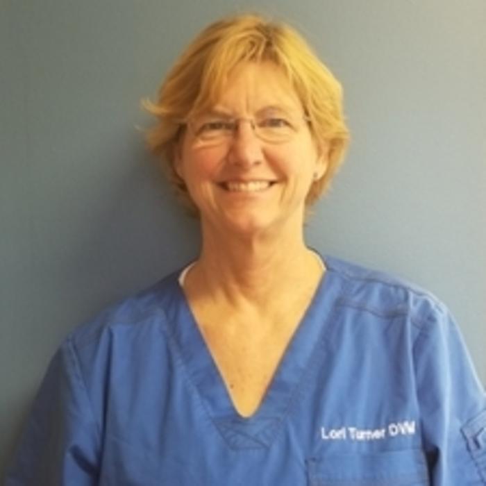 Dr. Lori  Turner photo